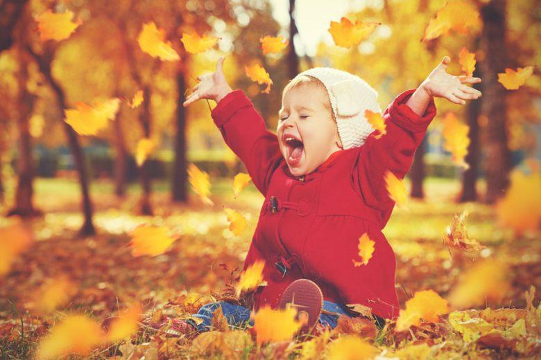 blog energiek de herfst door