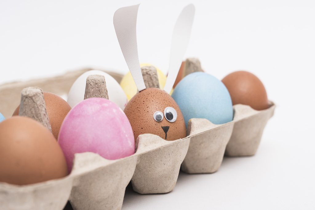 eierer 5 leuke feitjes over eieren